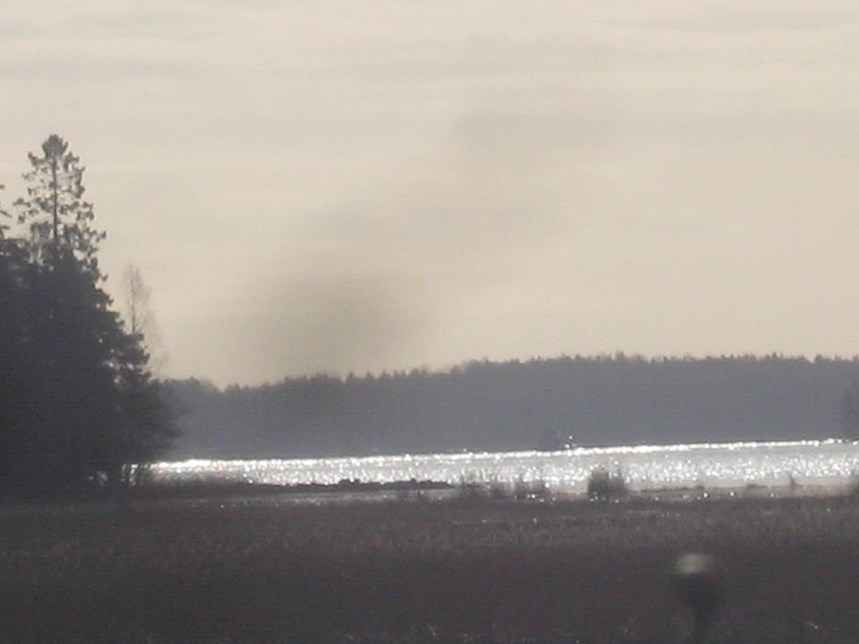 Husön Ratsastuskeskus sijaitsee meren äärellä