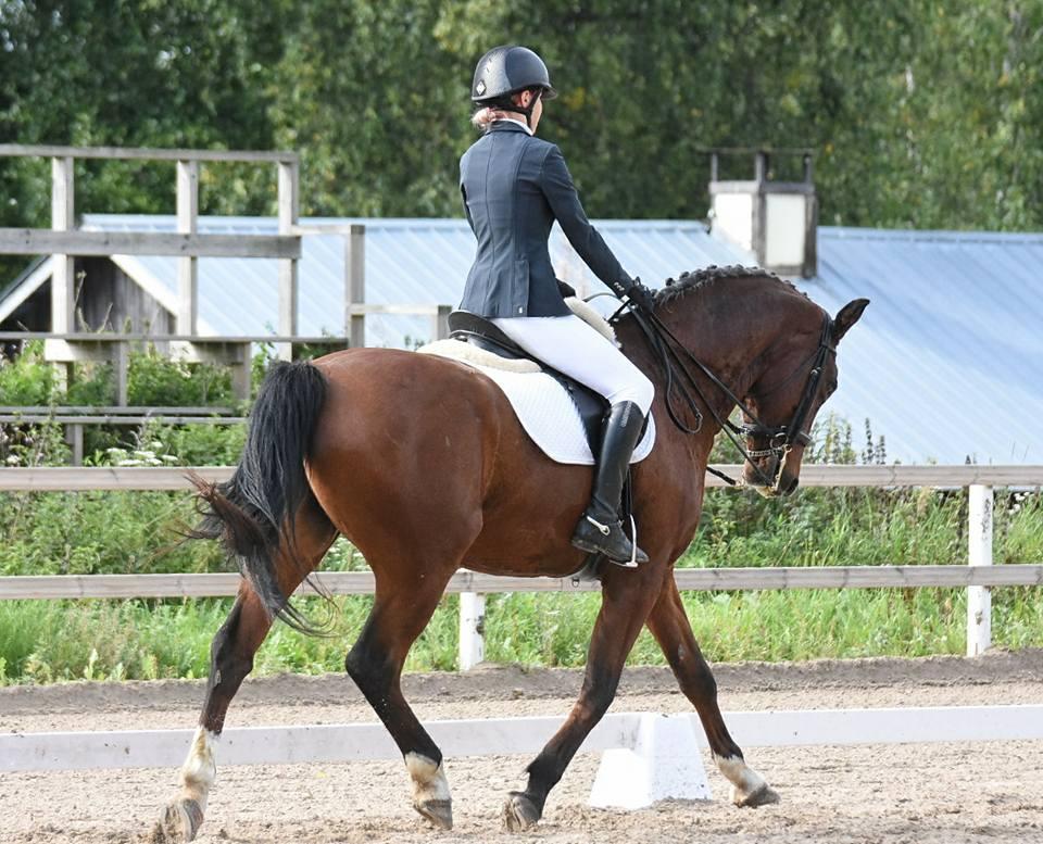 Husön ratsastuskoulun hevonen ja ratsastaja kouluratsastuskilpailuissa.