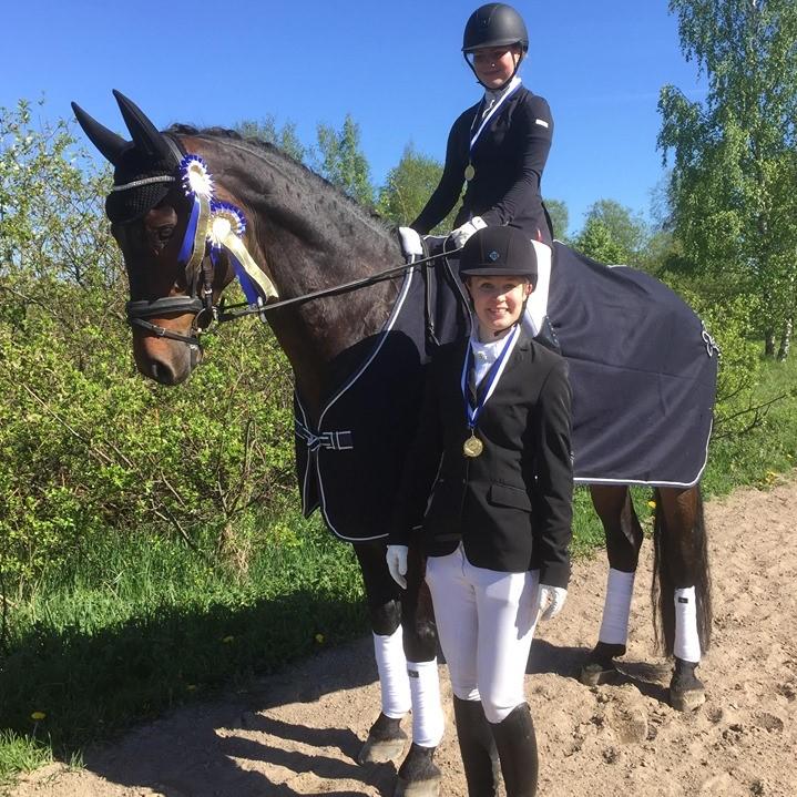 Husön ratsastuskoululla on laadukkaat opetushevoset ja valmennusryhmät